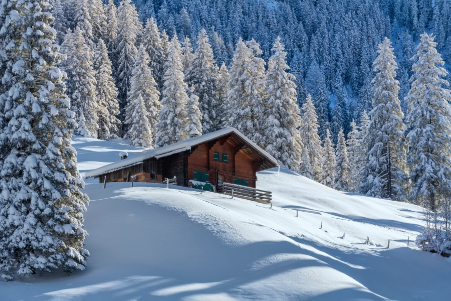 Guided Skiing / Snowboarding - Adelboden 1
