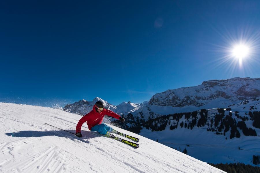 Ski Pass Adelboden 1