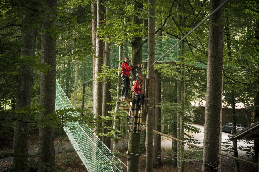 High Ropes Park Interlaken 0