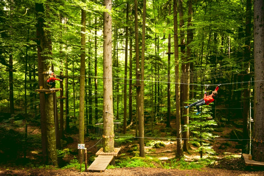 High Ropes Park Interlaken 1