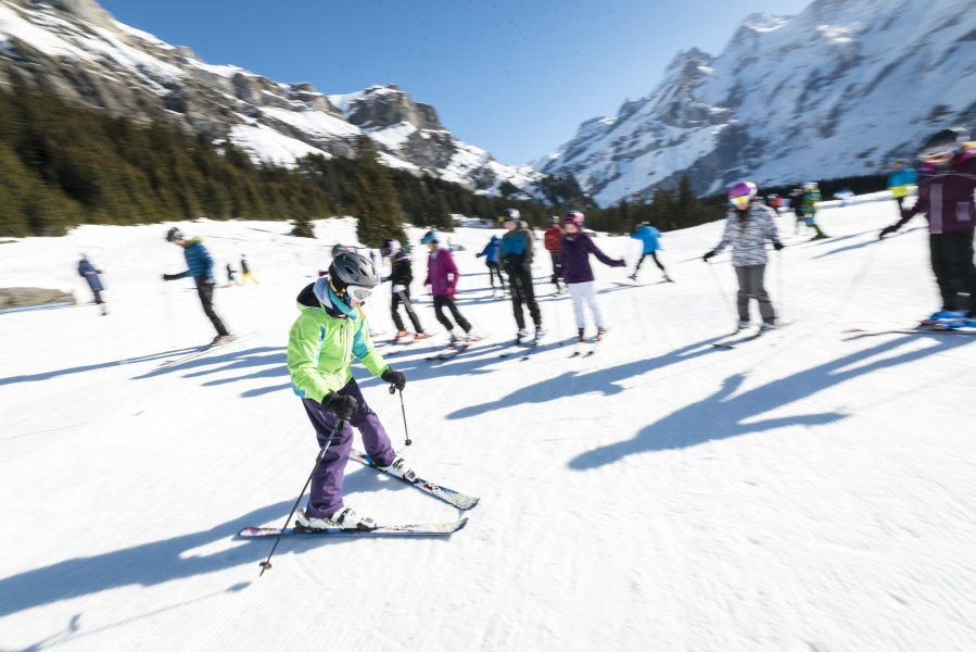 Private Ski / Snowboard Lesson  - Kandersteg 1