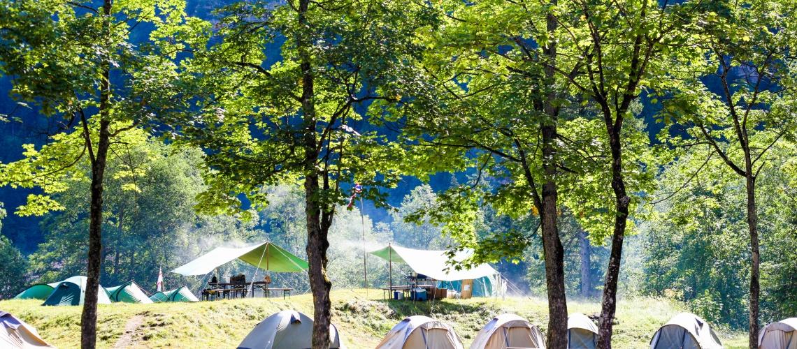 Campsite, Guest Services, Campervans