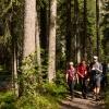 Gasterntal Hike 1 small